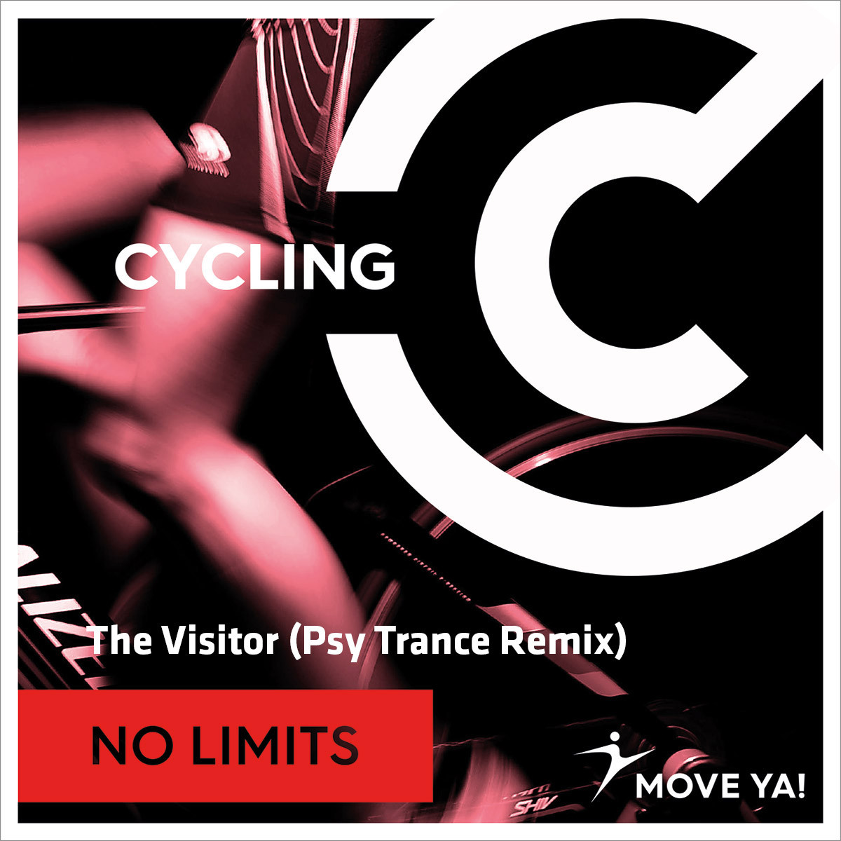 The Visitor (Psy Trance Remix)